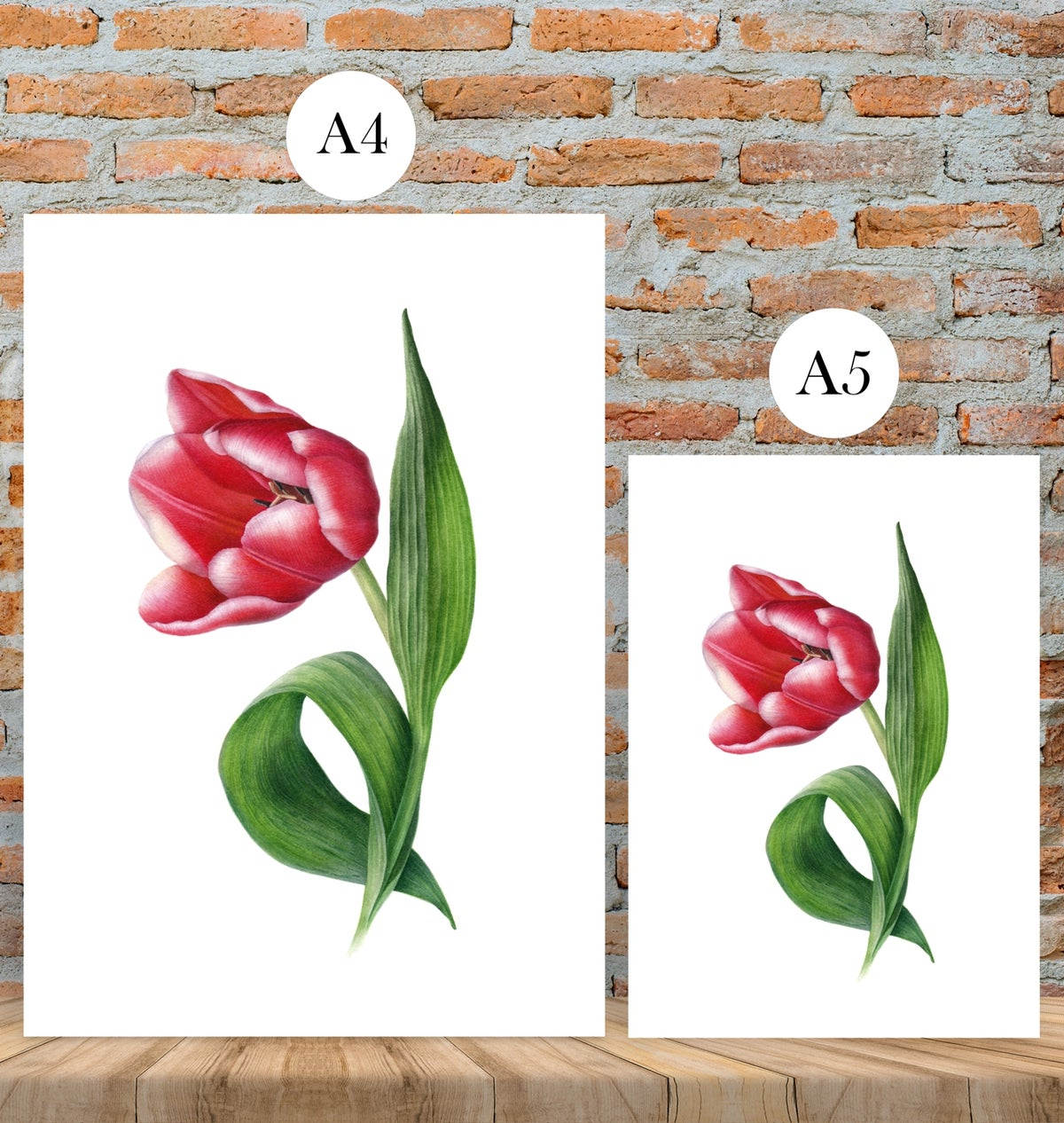 """Cheer Up!"" Fine art print of a red tulip watercolor painting."
