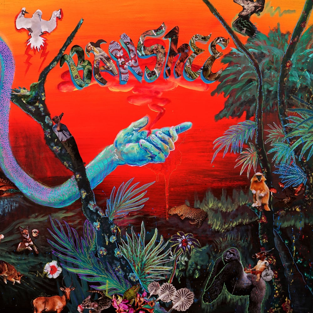 Image of Banshee - Livin' In The Jungle (G/fold Sleeve with cool Booklet) Cardinal Fuzz 4 LEFT