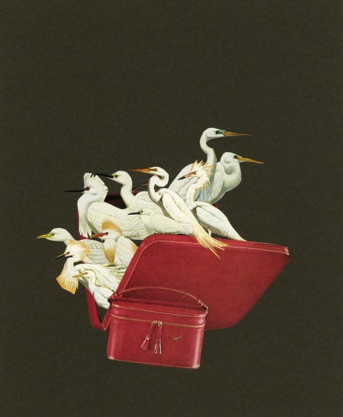 Image of Many r(egrets). Limited edition collage print.