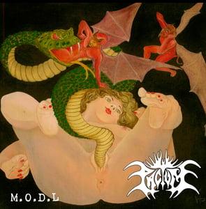 """Image of PACTUM """"M.O.D.L"""""""