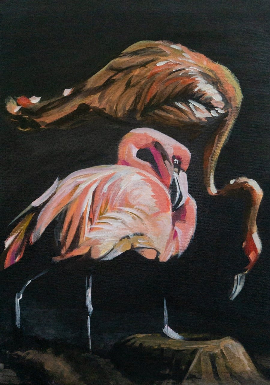 Image of Birds of Fire