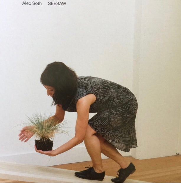 Image of (Alec Soth)(アレック•ソス)(SEESAW)