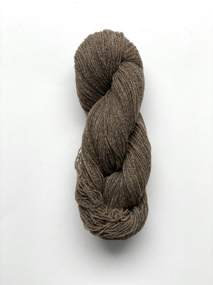 Image of (New) Lambswool - Teddy (44)