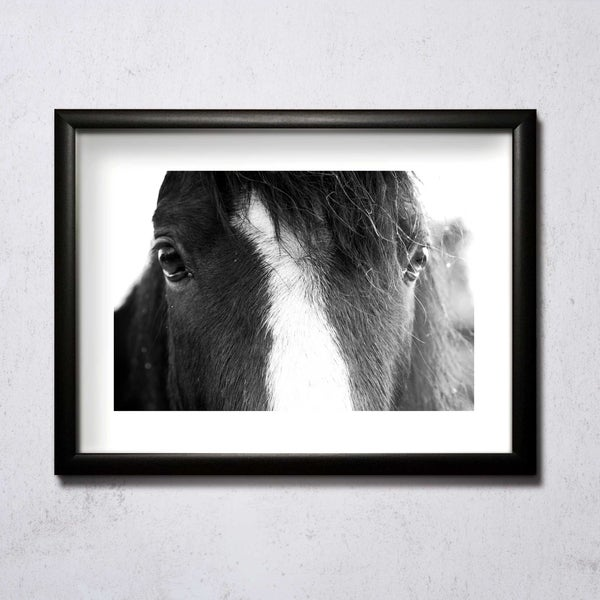 Image of Eyes Of A Horse A4/A3 photographic print