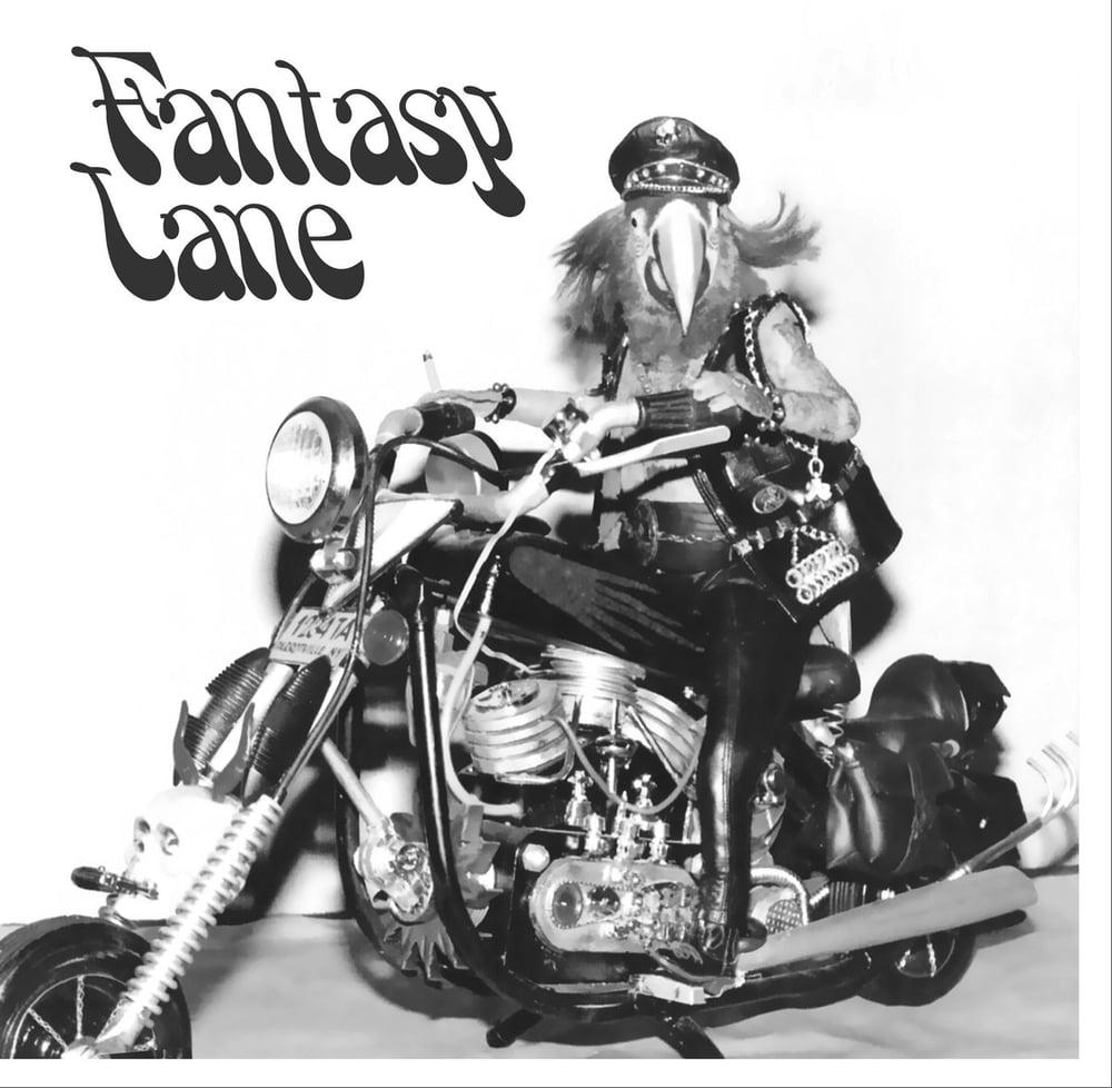 Image of Fantasy Lane- S/T LP