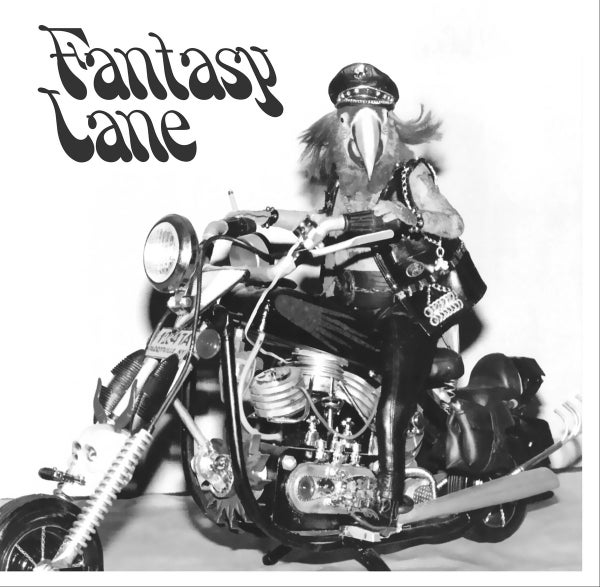 Image of Fantasy Lane- S/T LP