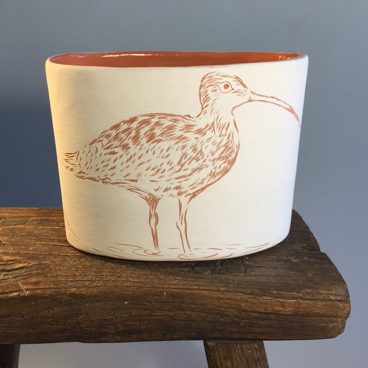 Image of Endangered Eastern Curlew