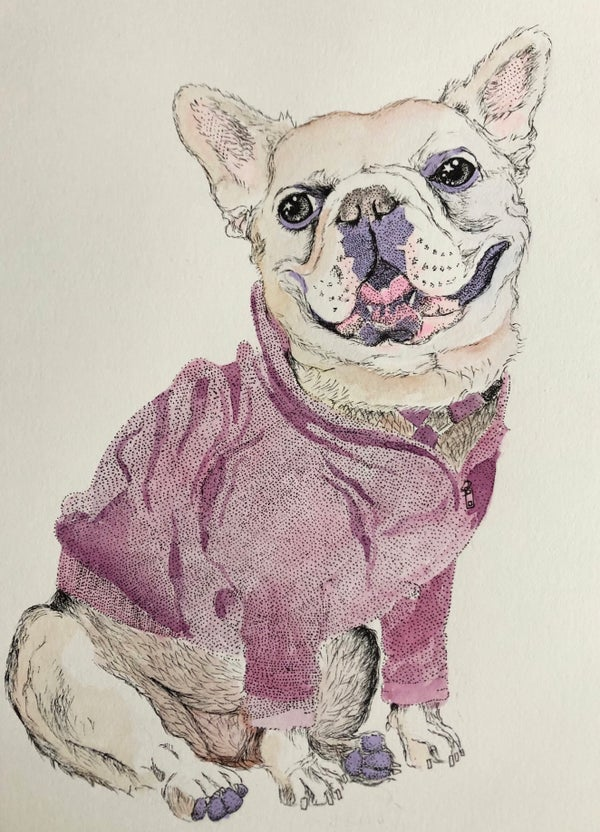 Image of Pet Portrait & Other Commissions (50% Deposit)