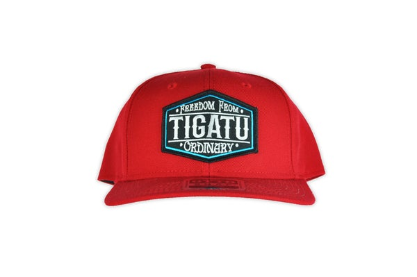 "Image of ""Freedom"" Snapback - Red/Blue"