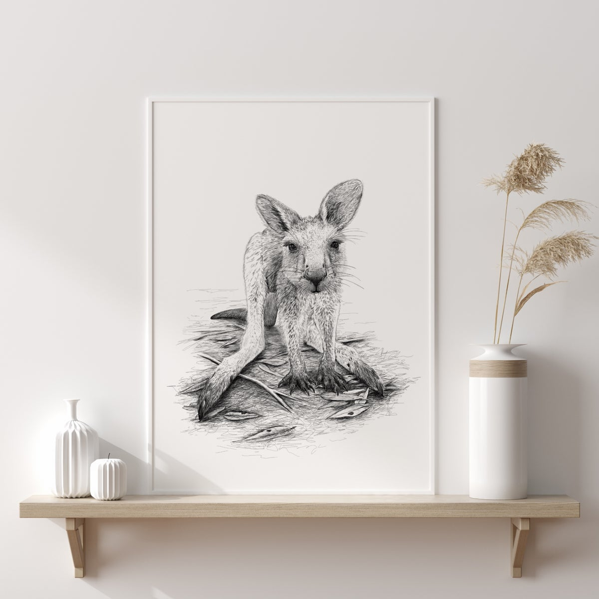 Image of Kangaroo