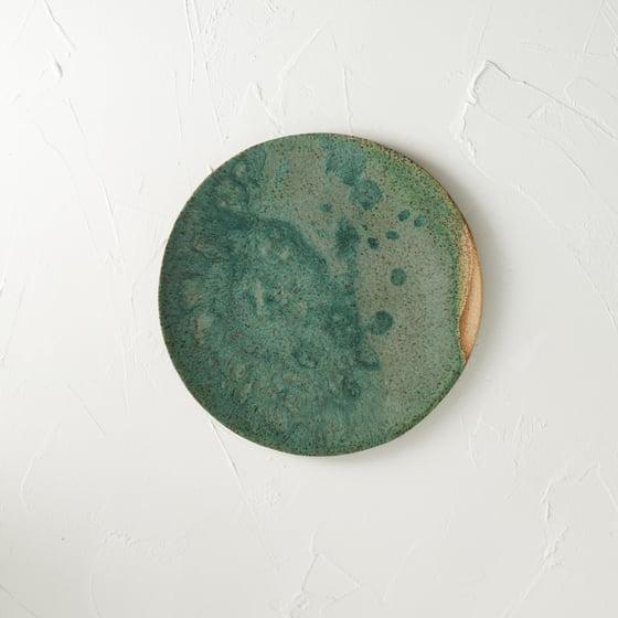 Image of Fern Alley splatter plate