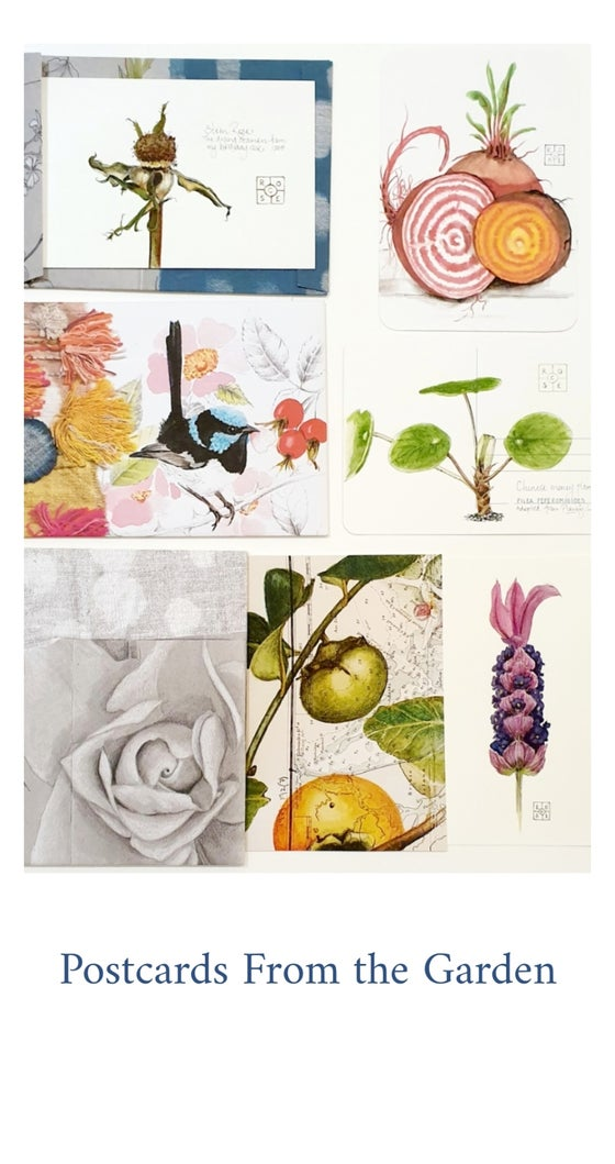 Image of 'Postcards from the Garden' botanical drawing with Rose Colbeck March 29th 11am-4pm