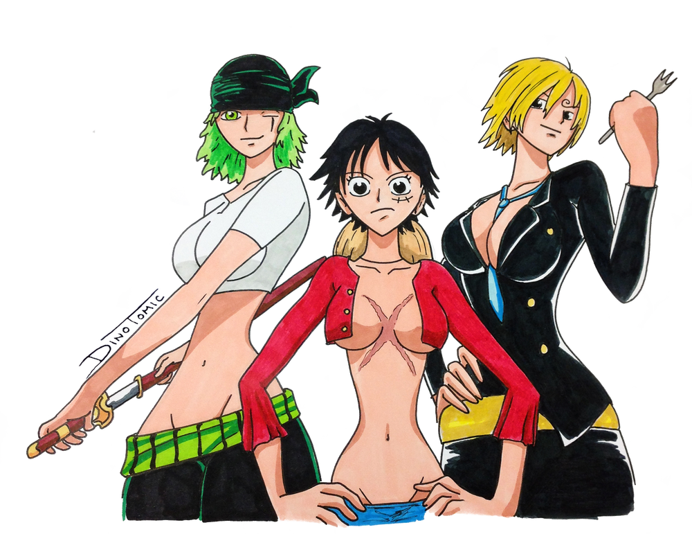 Image of #172 One Piece gender swap