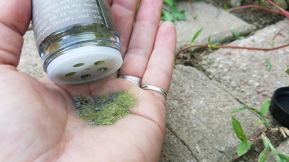 Image of Herbal Dirt facial exfoliator/mask