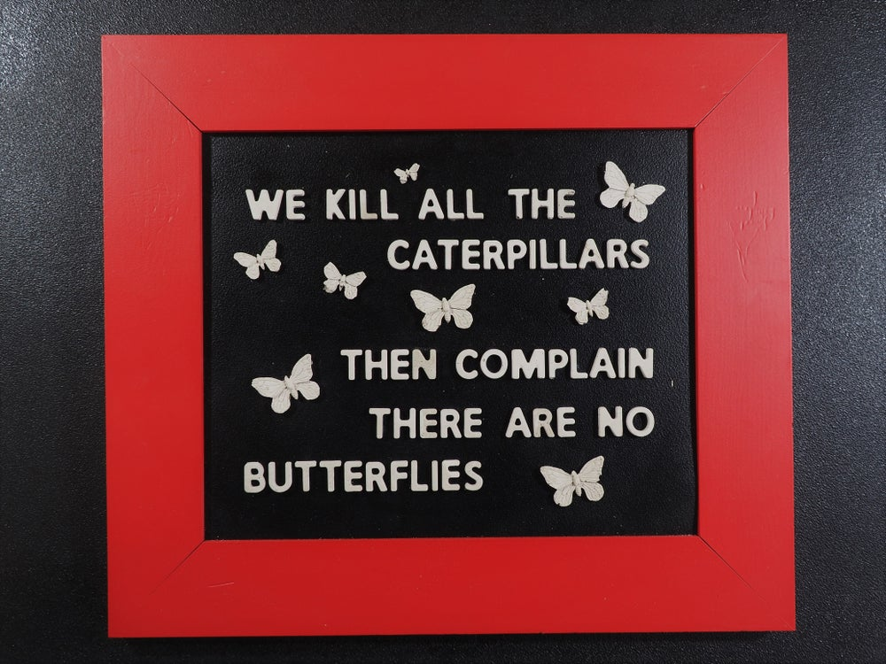 Image of We Kill all the Caterpillars