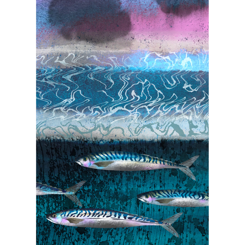 Image of Magic Mackerel