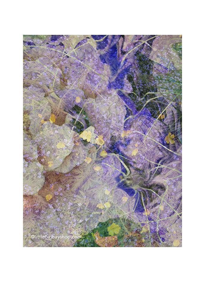 Image of Spring Breath 01