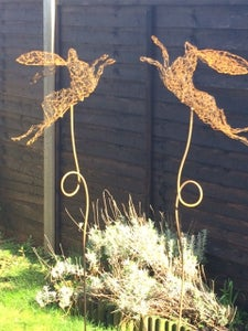 Image of Boxing Hares