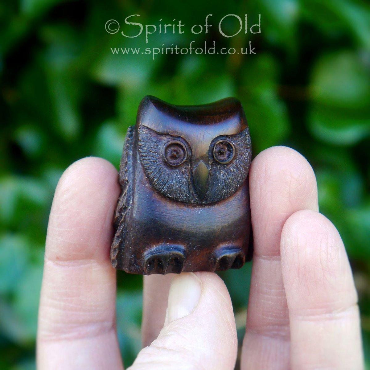 Image of Irish bog yew owl amulet (DAM415)