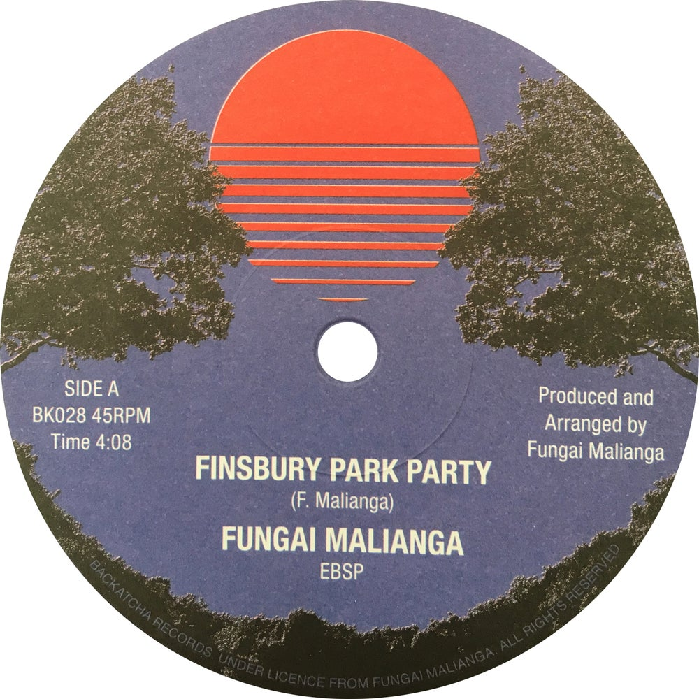Image of Fungai Malianga