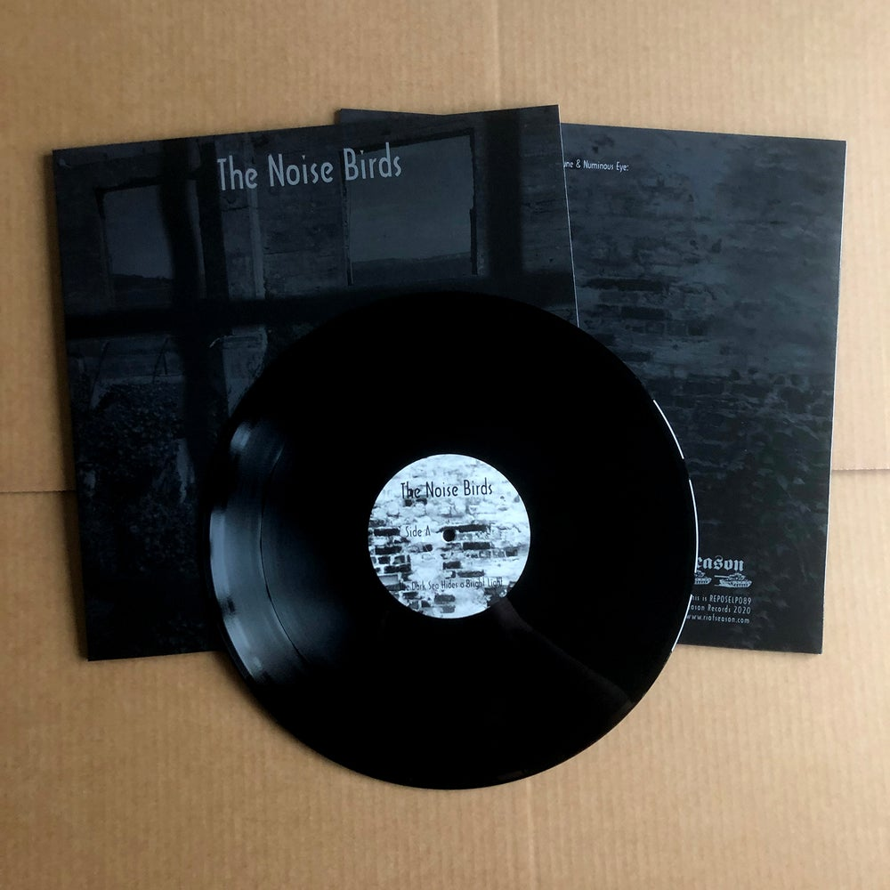 THE NOISE BIRDS 'The Dark Sea Hides A Bright Light' Vinyl LP