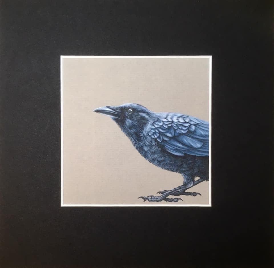 Enquiring Crow Limited Edition Print
