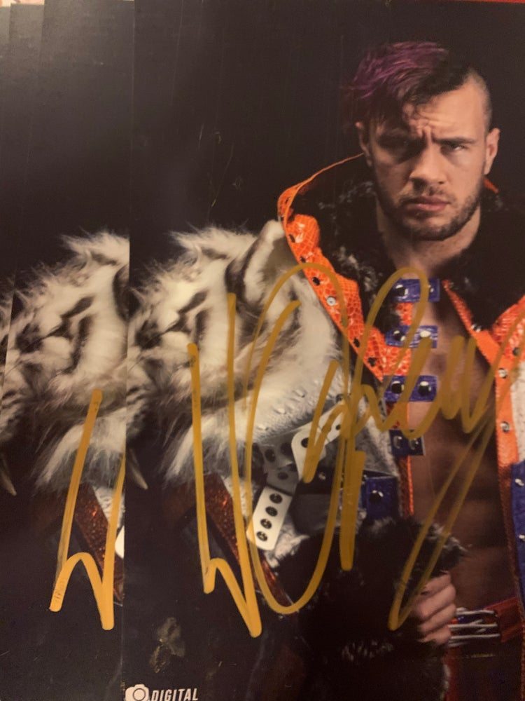 Image of Signed Snow Tiger 8x10