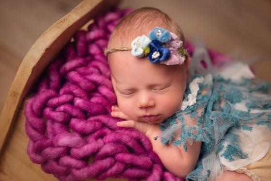 Image of Velvet beauty