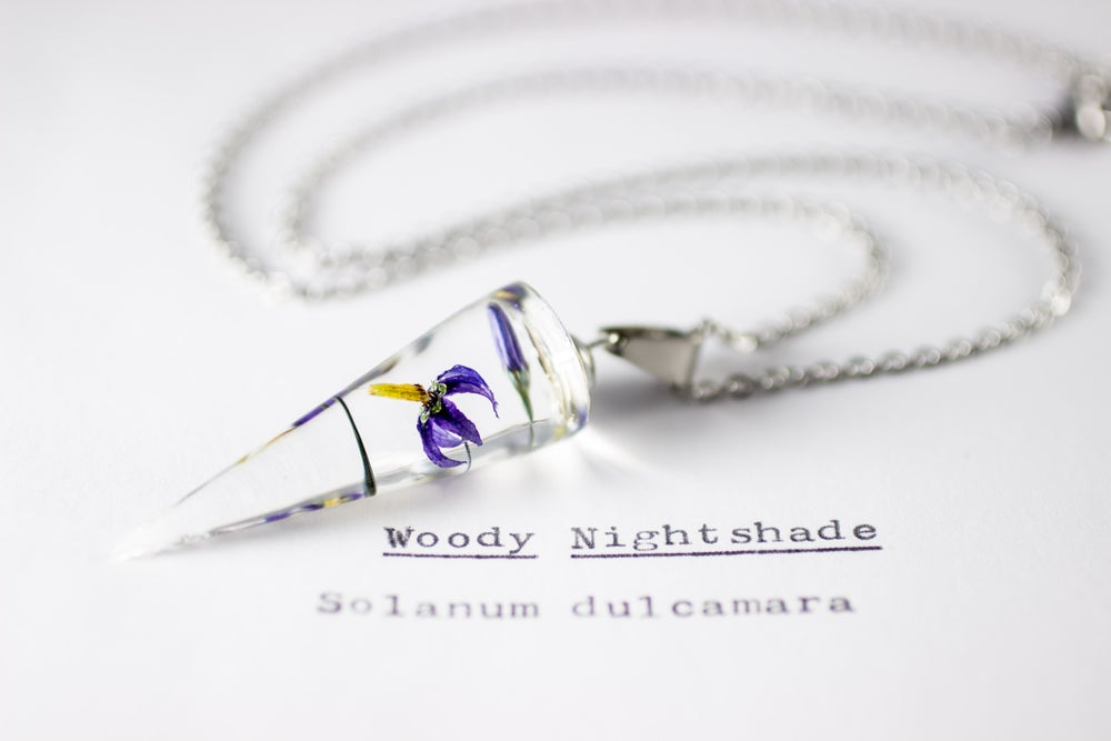 Image of Woody Nightshade (Solanum dulcamara) - Conical Pendant #1