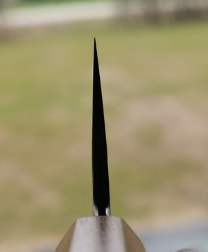 Image of 220x51mm Gyuto kasumi