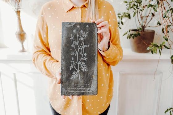 "Image of  Schieferplatte "" Botanic 4"""