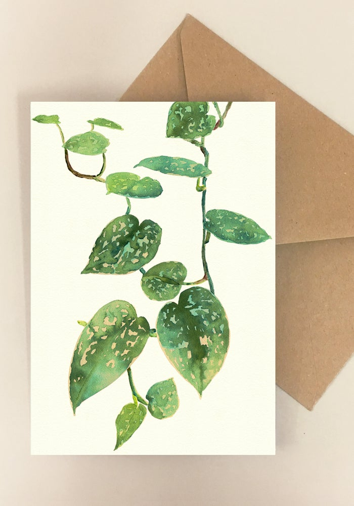 Image of 5 Notecards - Folded - Pothos Satin No.1015
