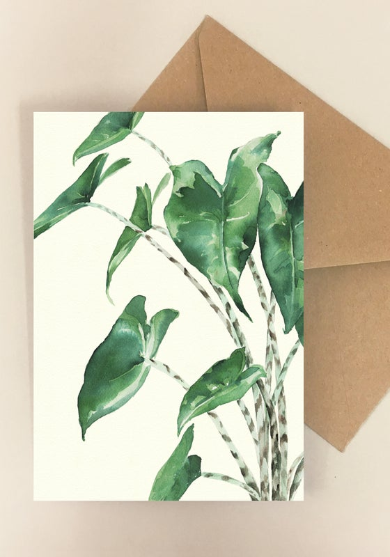 Image of 5 Notecards Alocasia - Folded -No 1017