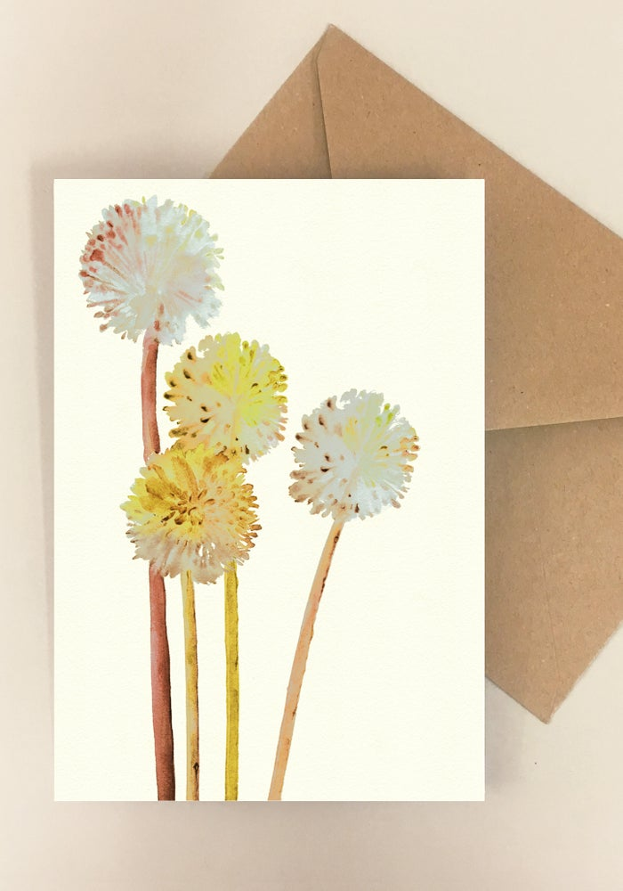 Image of 5 Notecards - Folded - Allium Yellow No.1013