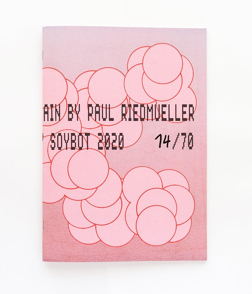 Image of Paul Riedmueller - There is nothing to explain