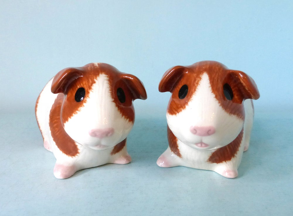 Image of Guinea Pig Salt and Pepper