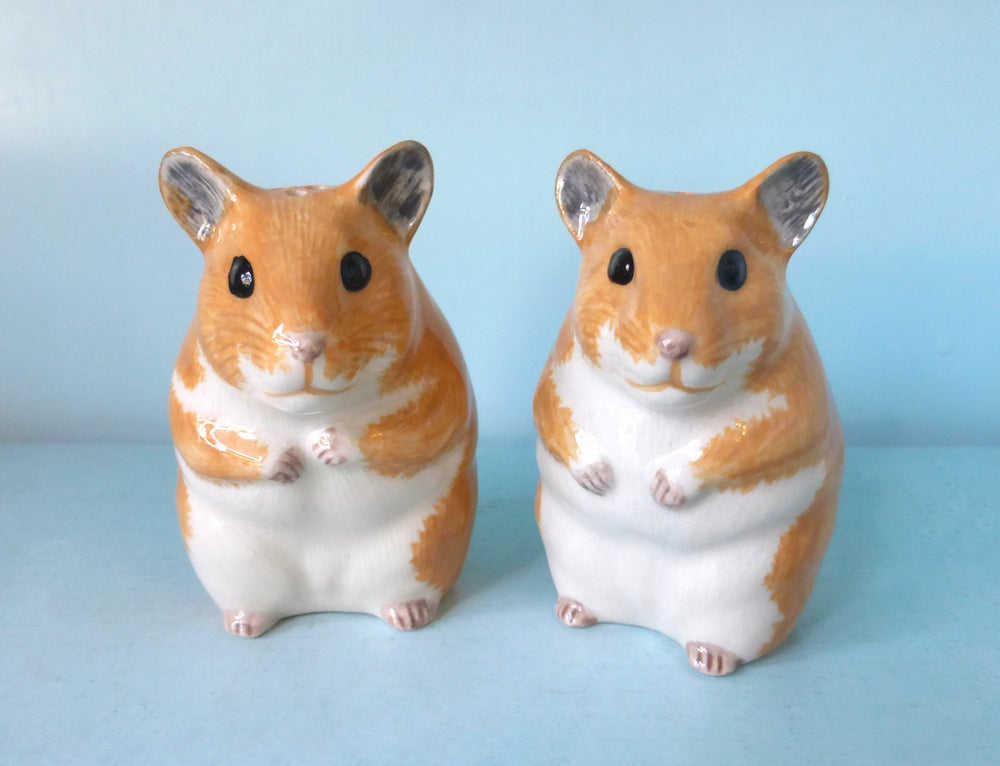 Image of Hamster Salt and Pepper