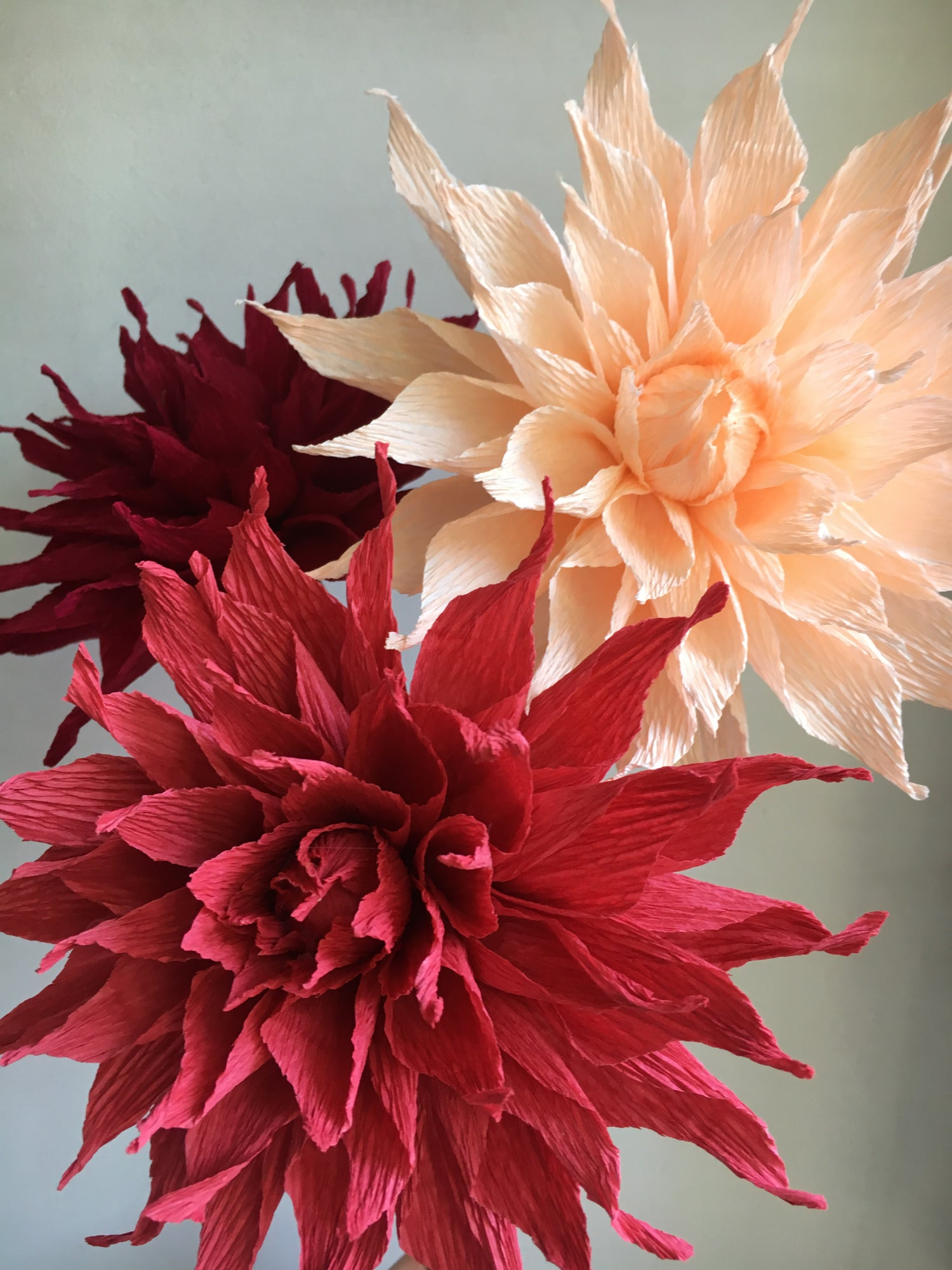 Image of Dahlia Bouquet - Orange, Maroon, Peach