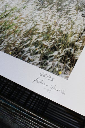 NAKBA - Adrien Vautier