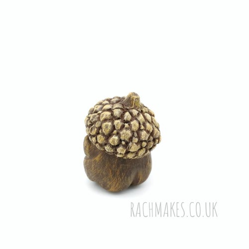 Image of Acorn Baby Mandrake.