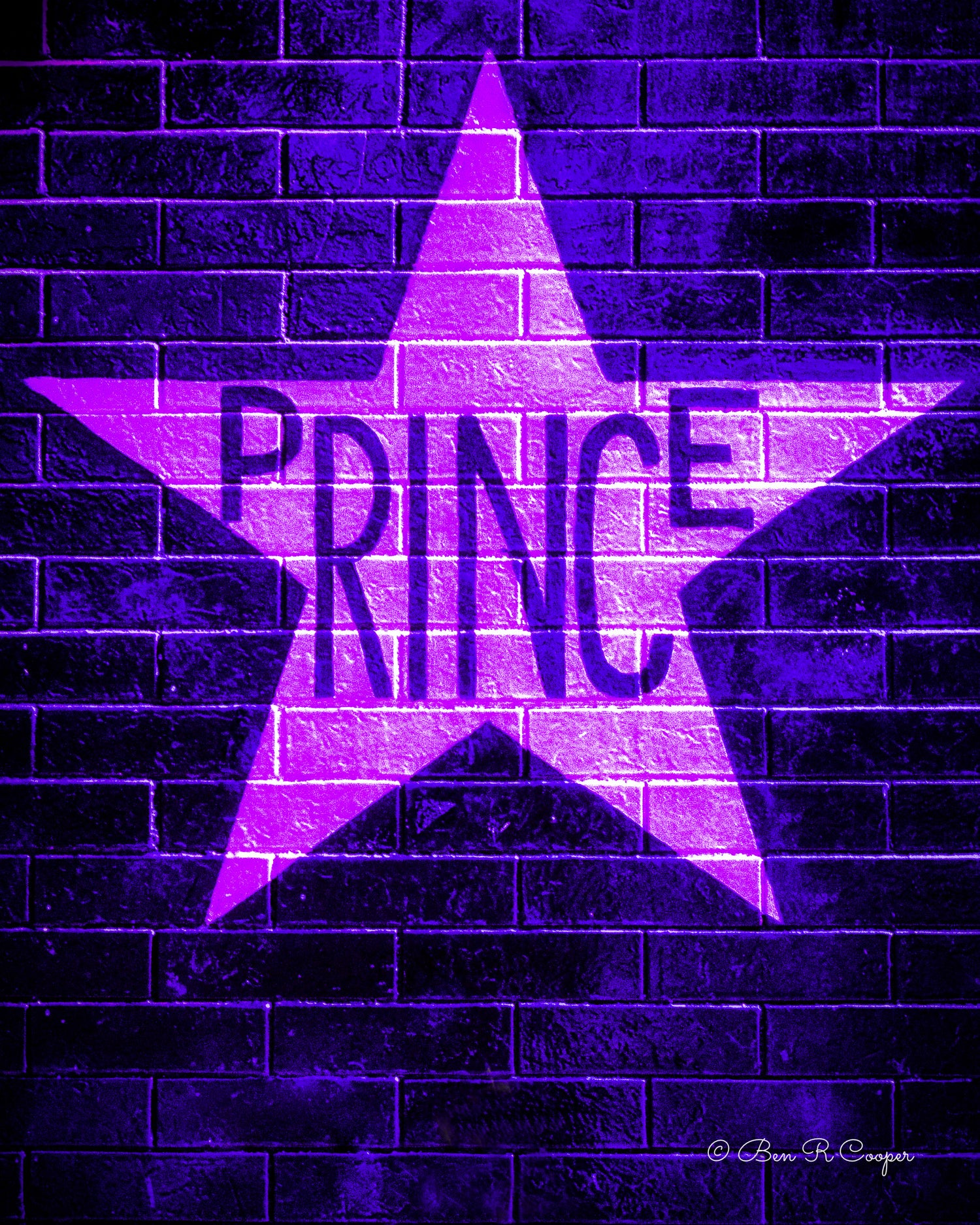 Prince's Star in Purple