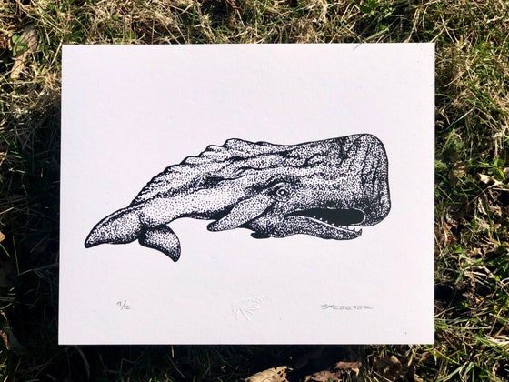 Image of Whale - 8x10 Print