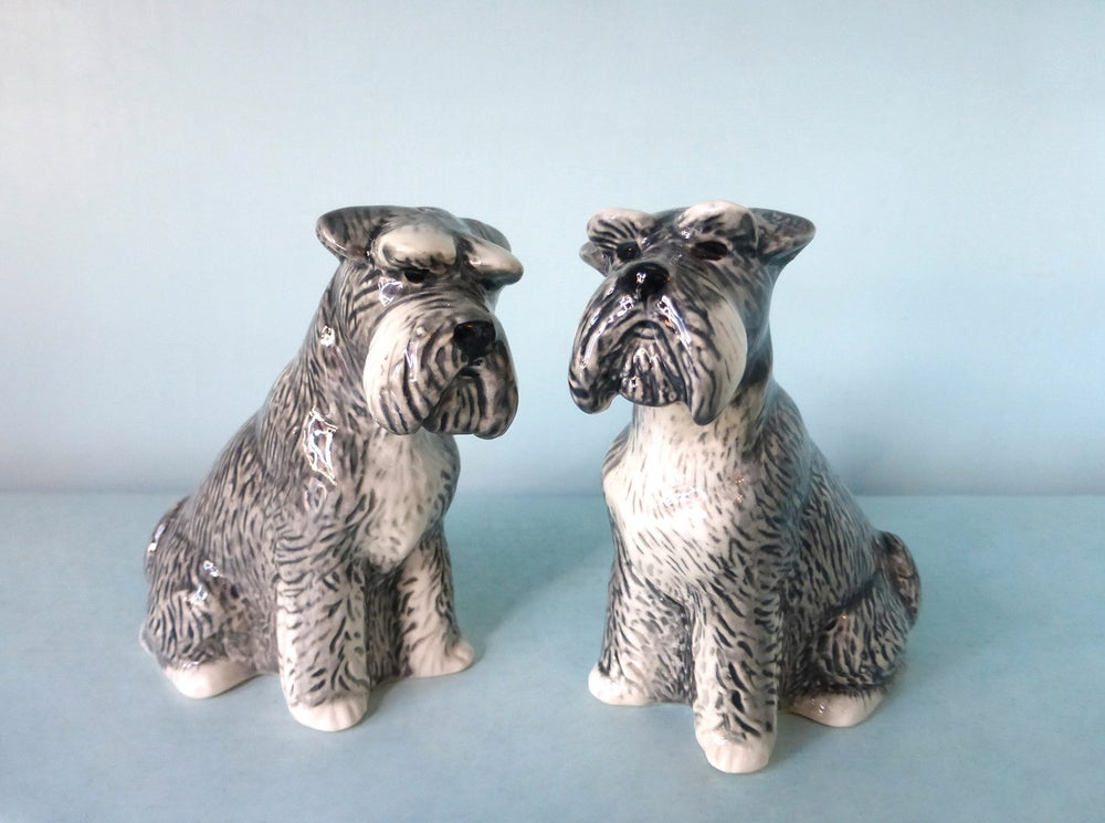 Image of Schnauzer Salt and Pepper