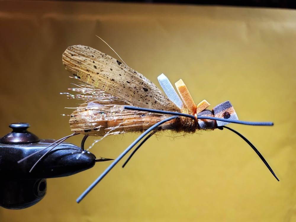 Image of Swinks Salmonfly
