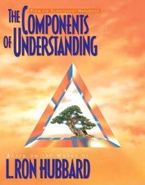 Image of THE COMPONENTS OF UNDERSTANDING BOOKLET
