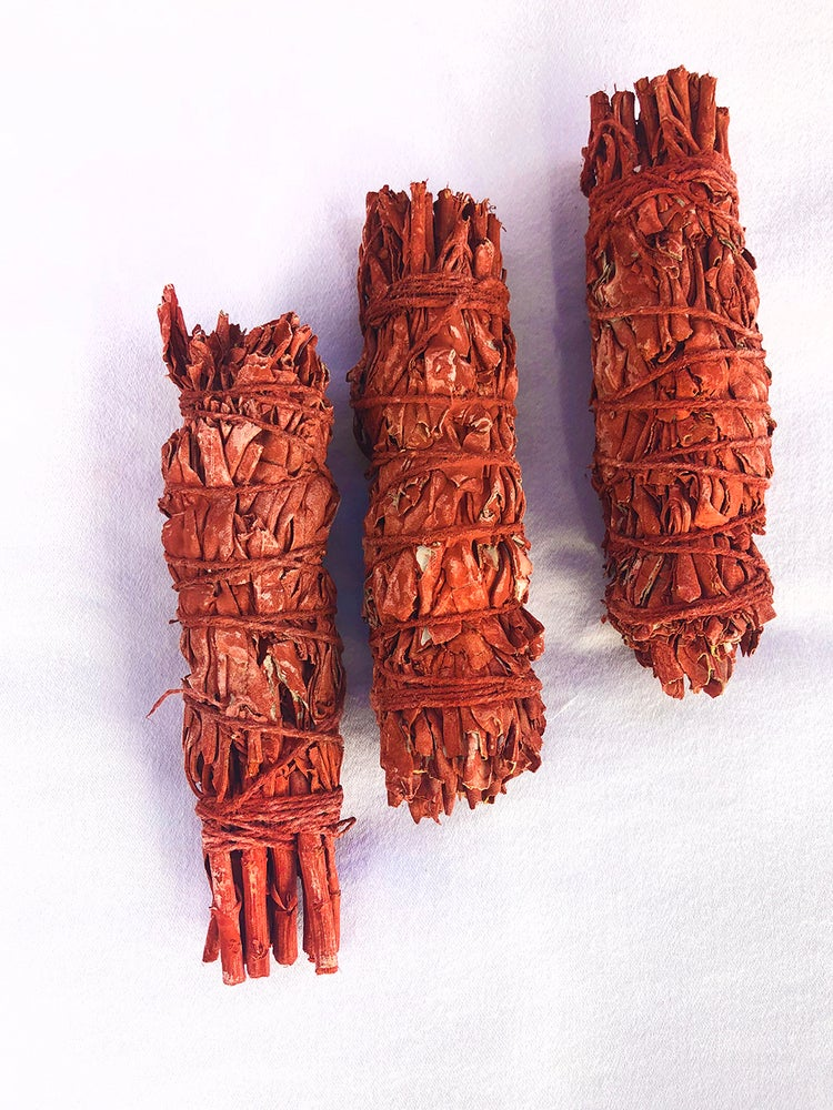 Image of Dragon Blood Sage - KILLS bacteria, viruses, and microbials in the air!