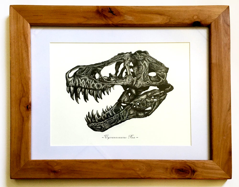 Image of T. Rex skull in a Ravenwood Frame
