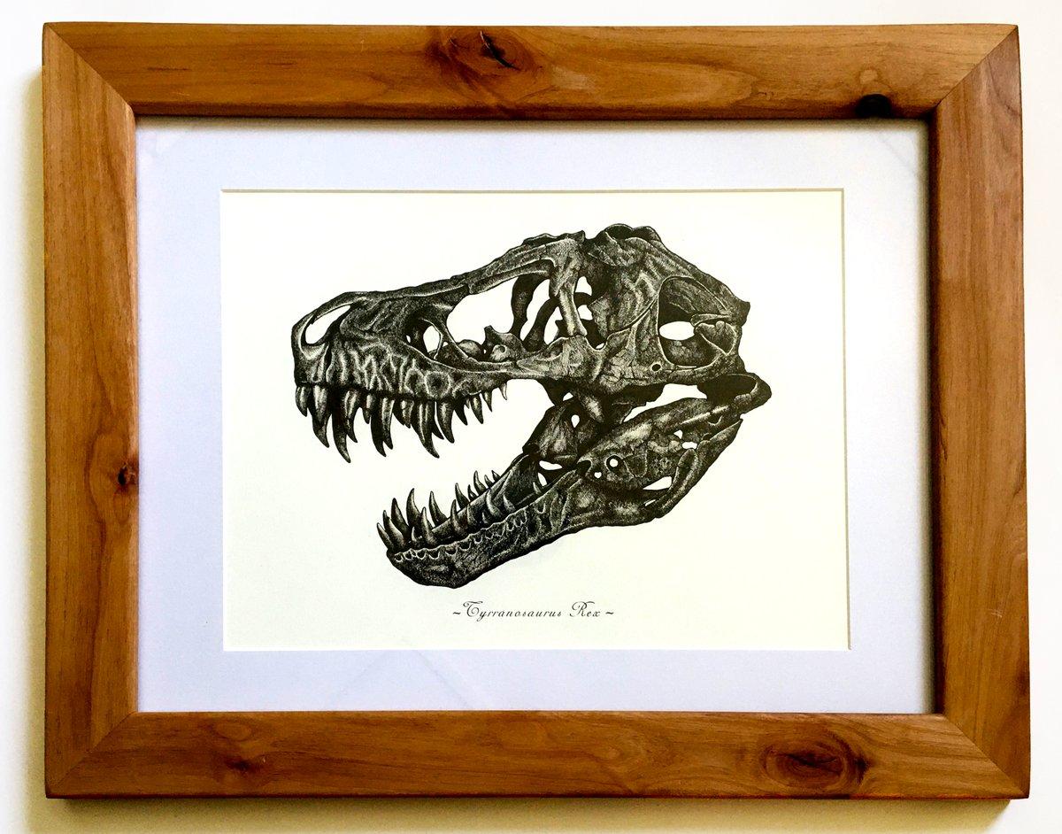 Image of T. Rex skull in a Ravenwood Frame