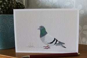 Image of Racing Pigeon Greeting Card