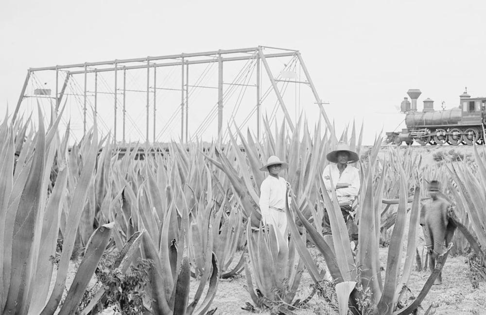 Image of Ocho Tequila Margarita Class & Tasting for 8